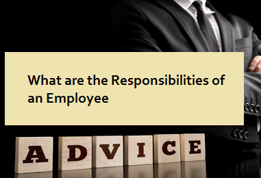 What are the Responsibilities of an Employee