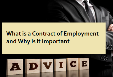 What is a Contract of Employment and Why is it Important