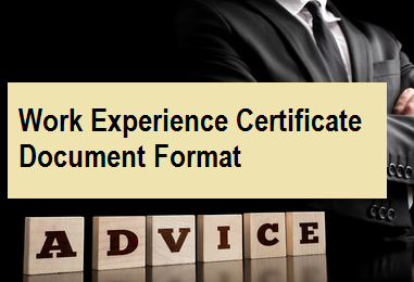 Work Experience Certificate Document Format